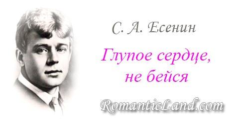 Стихотворение: Глупое сердце, не бейся! Сергей Есенин