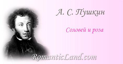 В безмолвии садов, весной, во мгле ночей, Поет над розою восточный соловей. Но роза милая не чувствует, не внемлет, И под влюбленный гимн колеблется и дремлет.