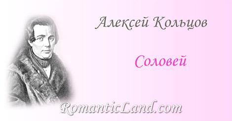 Подражание Пушкину Пленившись розой, соловей И день и ночь поет над ней Но роза молча песням внемлет,